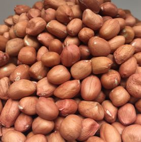 Organic raw groundnut